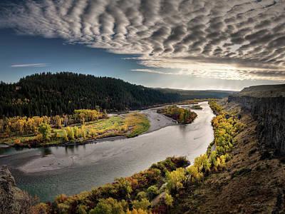 Cottonwood Photograph - River Light by Leland D Howard