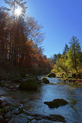 Photograph - River Mostnica by Davor Zerjav