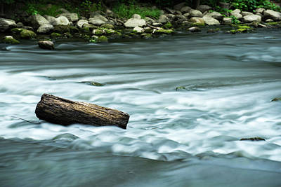 Pyrography - River Motion by Douglas Milligan