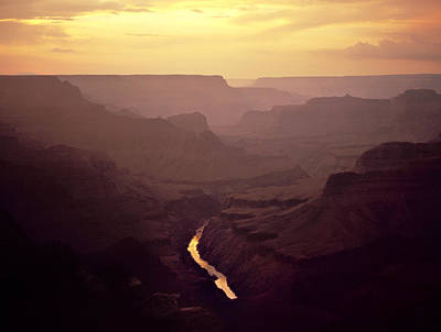 Grand Canyon Photograph - River Of Gold by Mike Buchheit