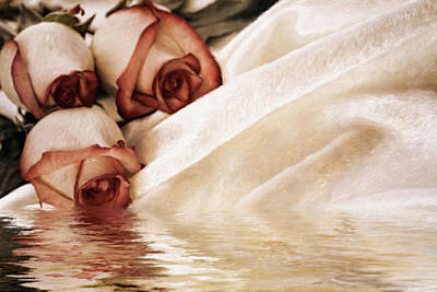 Flora Mixed Media - River Of Roses by Georgiana Romanovna