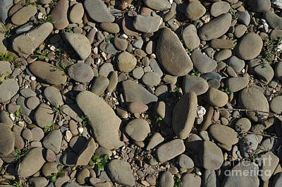 Time Photograph - River Pebbles by Angelo DeVal