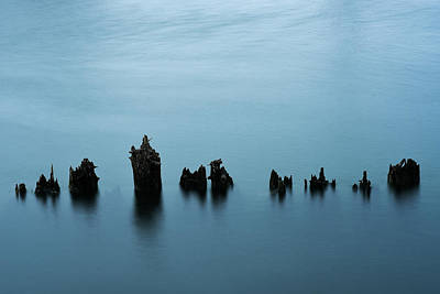 Photograph - River Pilings by Robert Potts