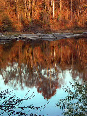 River Reflection Art Print by Skip Willits