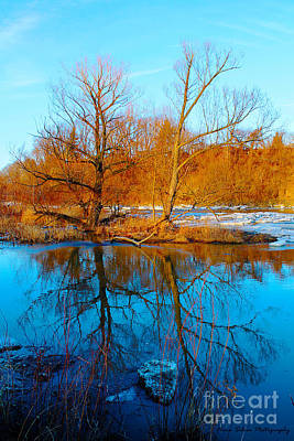 Photograph - River Reflections In Spring by Nina Silver