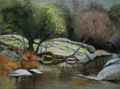 Pastel - River Reflections by Sandra Lee Scott