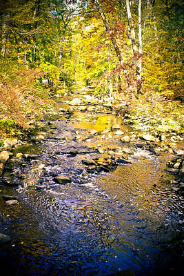 Photograph - River Rock - Pocantico River by Colleen Kammerer