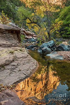 Photograph - River Rock Reflection by Jamie Pham