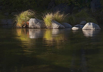 Print featuring the photograph River Rocks And Grass by Larry Darnell