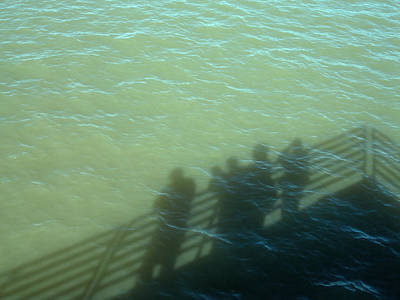 Photograph - River Shadows by Lynda Lehmann