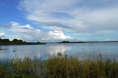 Photograph - River Shannon At Hodson Bay. by Terence Davis