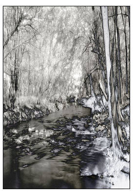 Photograph - River Styx by Thomas Bomstad