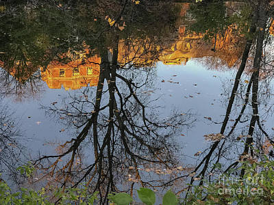 Photograph - River Trees by Joseph Yarbrough