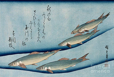 Trout Drawing - River Trout by Hiroshige