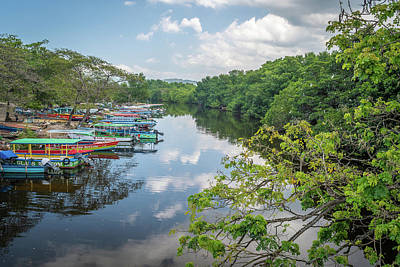 Photograph - River Views In Negril, Jamaica by Debbie Ann Powell