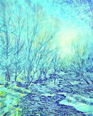 Digital Art - River With Trees In Blue - Boulder County Park In Colorado by Joel Bruce Wallach