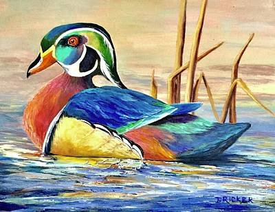 Painting - River Wood Duck by Jane Ricker