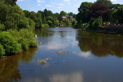 Photograph - River Wye From Hereford Old Bridge by Chris Day