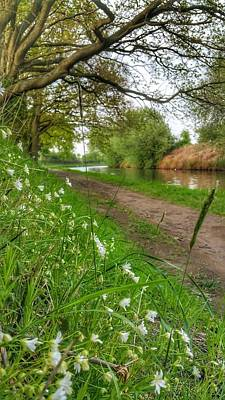 Photograph - Riverbank by Isabella F Abbie Shores