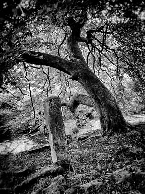 Megalith Photograph - Riverbank - Two Stones by Philip Openshaw