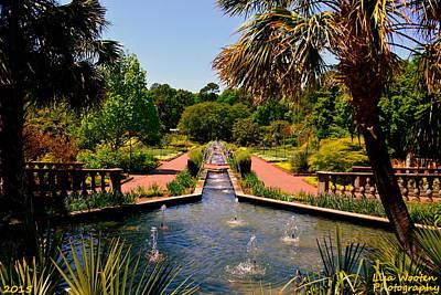 Photograph -  Botanical Gardens by Lisa Wooten