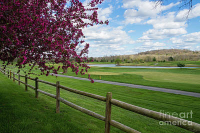 Photograph - Rivercut In Spring by Jennifer White