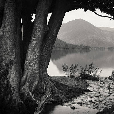 Rivulet To Buttermere Art Print by Dave Bowman
