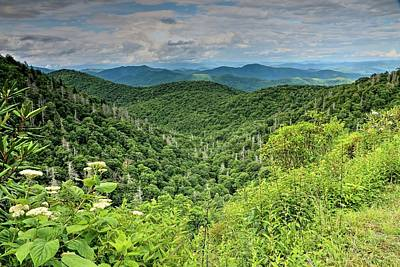 Photograph - Blue Ridge Mountain Landscape by Carol Montoya