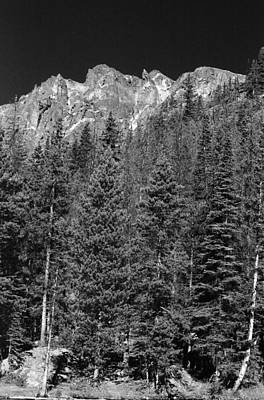 Photograph - Rmnp - Infrared 16 by Pamela Critchlow