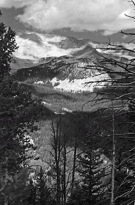 Photograph - Rmnp - Infrared 43 by Pamela Critchlow