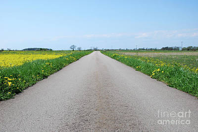 Photograph - Road In A Rural At Spring Landscape by Kennerth and Birgitta Kullman