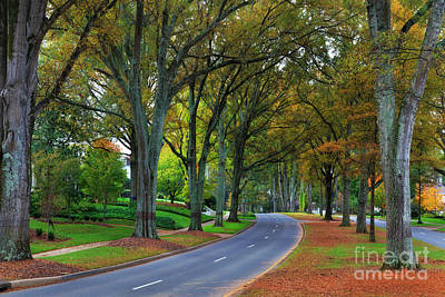 Road In Charlotte Art Print