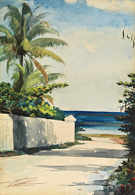 Winslow Homer Drawing - Road In Nassau, No. 1 Nassau Street by Winslow Homer