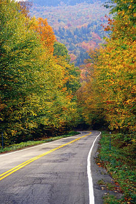 Road In The Autumn Forest Art Print by George Oze