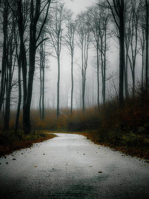 Photograph - Road In The Fog 07/11/17 by Plamen Petkov