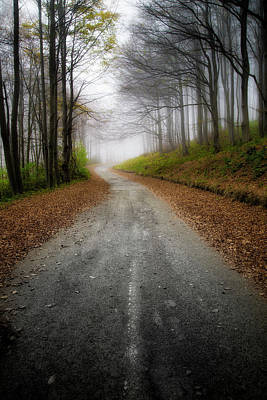 Photograph - Road In The Fog by Plamen Petkov