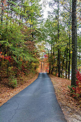 Photograph - Road In The Woods by James L Bartlett