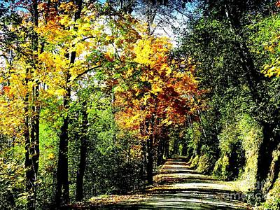 Art Print featuring the photograph Road Into Autumn by Terri Thompson
