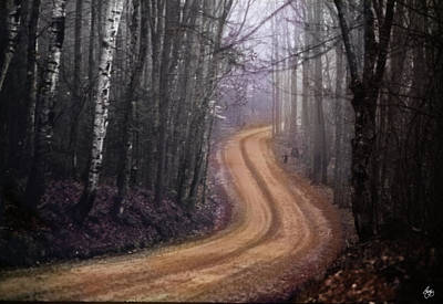 Photograph - Road Into The Mist by Wayne King
