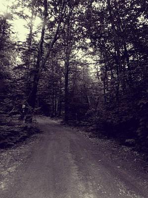 Photograph - Road Into The Woods by Susan Lafleur