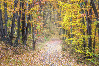 Photograph - Road Less Traveled by Andy Crawford