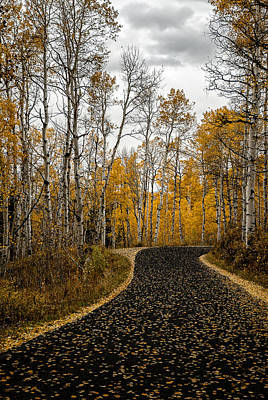 Photograph - Road Less Traveled by Scott Read