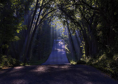 Photograph - Road Of Light And Shadows by Ron Grafe