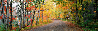 Dirt Roads Photograph - Road Passing Through A Forest, Keweenaw by Panoramic Images