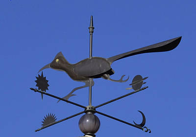 Art Print featuring the photograph Road Runner Weather Vane by Joan Hartenstein