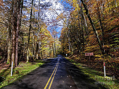 Photograph - Road Through Fall by Paul Mashburn