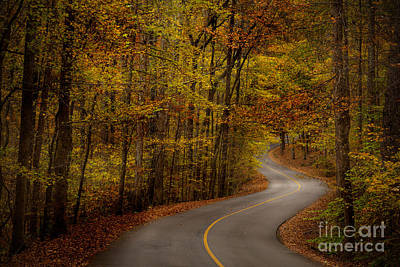 Road Through Tishomingo State Park Art Print