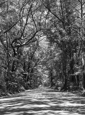 Road To Angel Oak Grayscale Art Print by Jennifer White