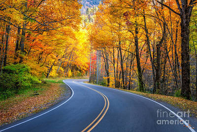 Photograph - Road To Autumn by Anthony Heflin