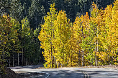 Photograph - Road To Autumn by Barry C Donovan
